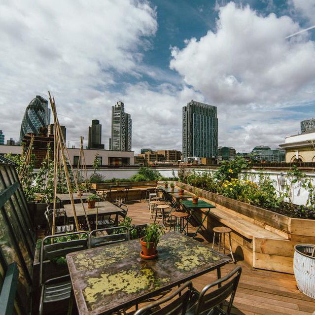 Best Rooftop Bars in the City