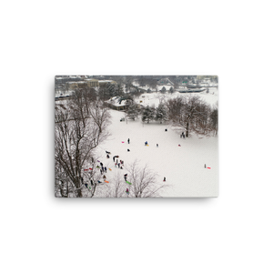 Hoyt Lake Delaware Park Canvas