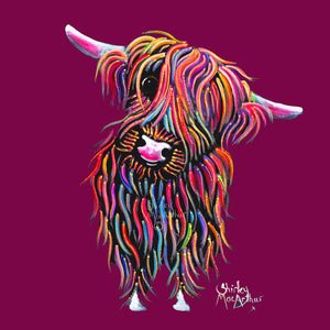Highland Cow Prints 'Bolly' by Shirley MacArthur