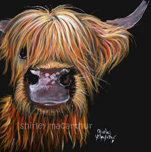 Highland Cow Prints 'Henry' by Shirley MacArthur