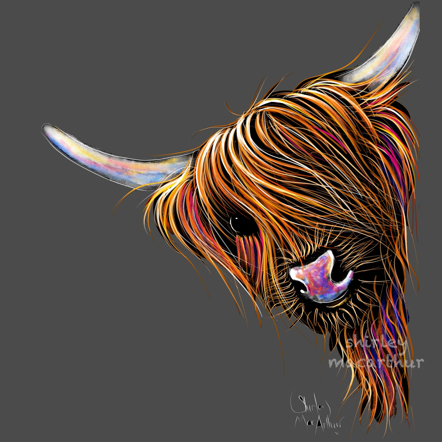Highland Cow Prints 'Noodles on Grey' by Shirley MacArthur