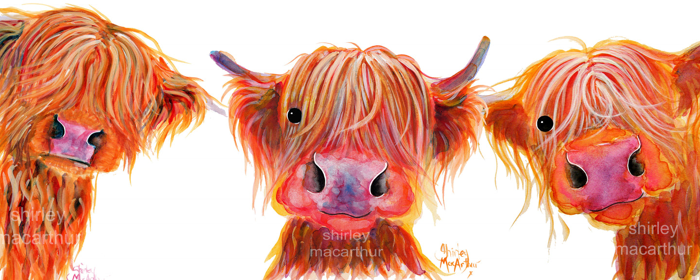 Highland Cow Prints 'The Oranges'  by Shirley MacArthur