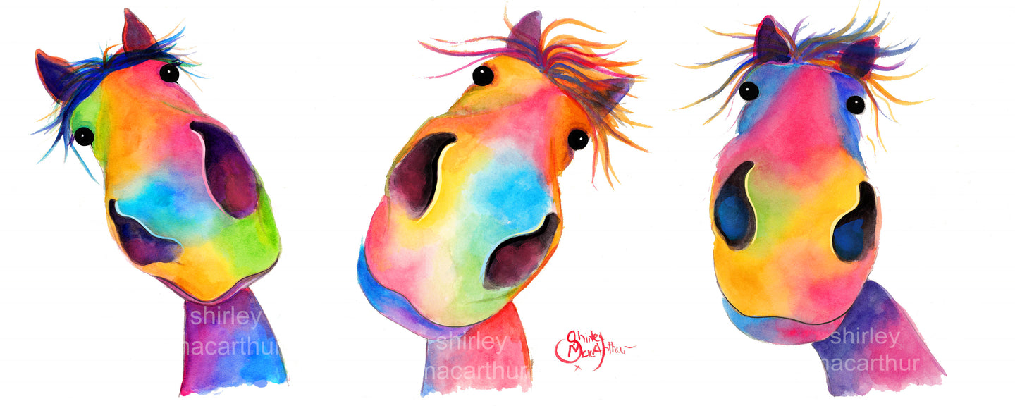 ' THe HaPPY HoRSeS ' - FRoM £37.50