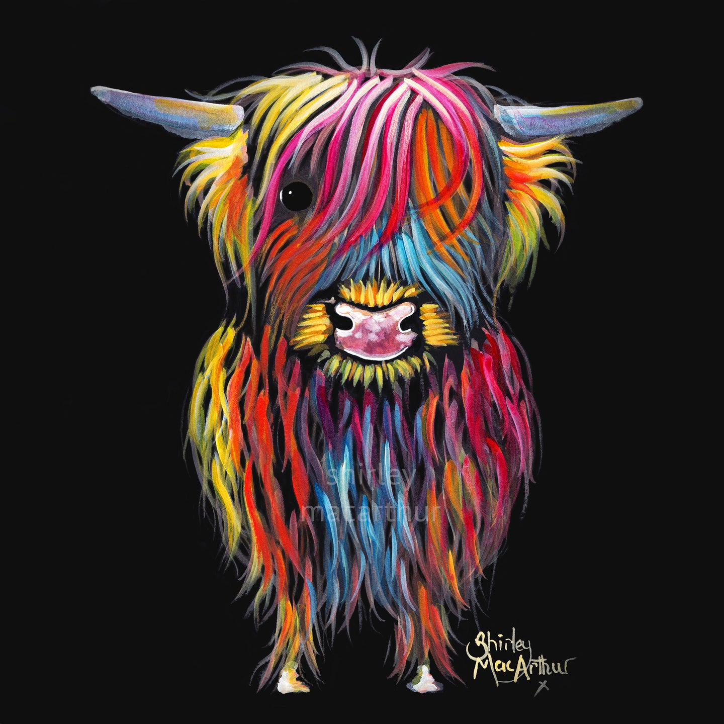 Highland Cow Prints 'Braveheart' by Shirley MacArthur