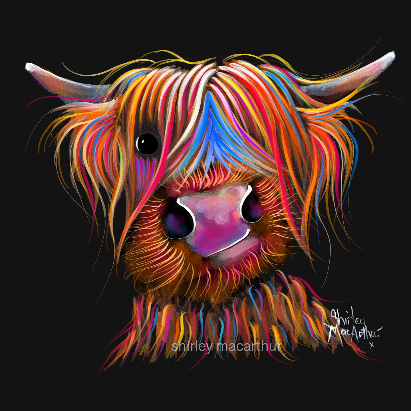 Highland Cow Wall Art 'Bruce' By Shirley MacArthur