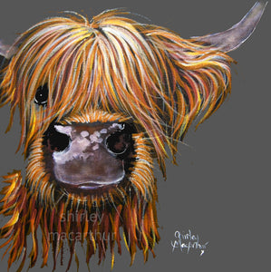 Highland Cow Prints 'Henry on Grey' by Shirley MacArthur