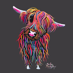 Highland Cow Prints 'Bolly on Grey' by Shirley MacArthur