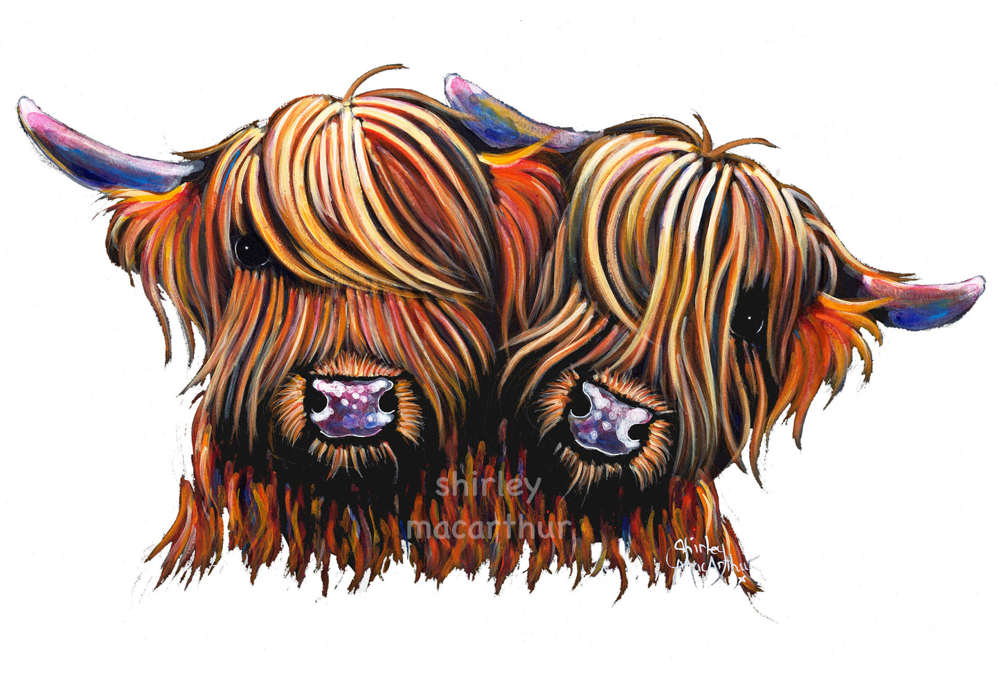 Highland Cow Prints 'Pals' by Shirley MacArthur
