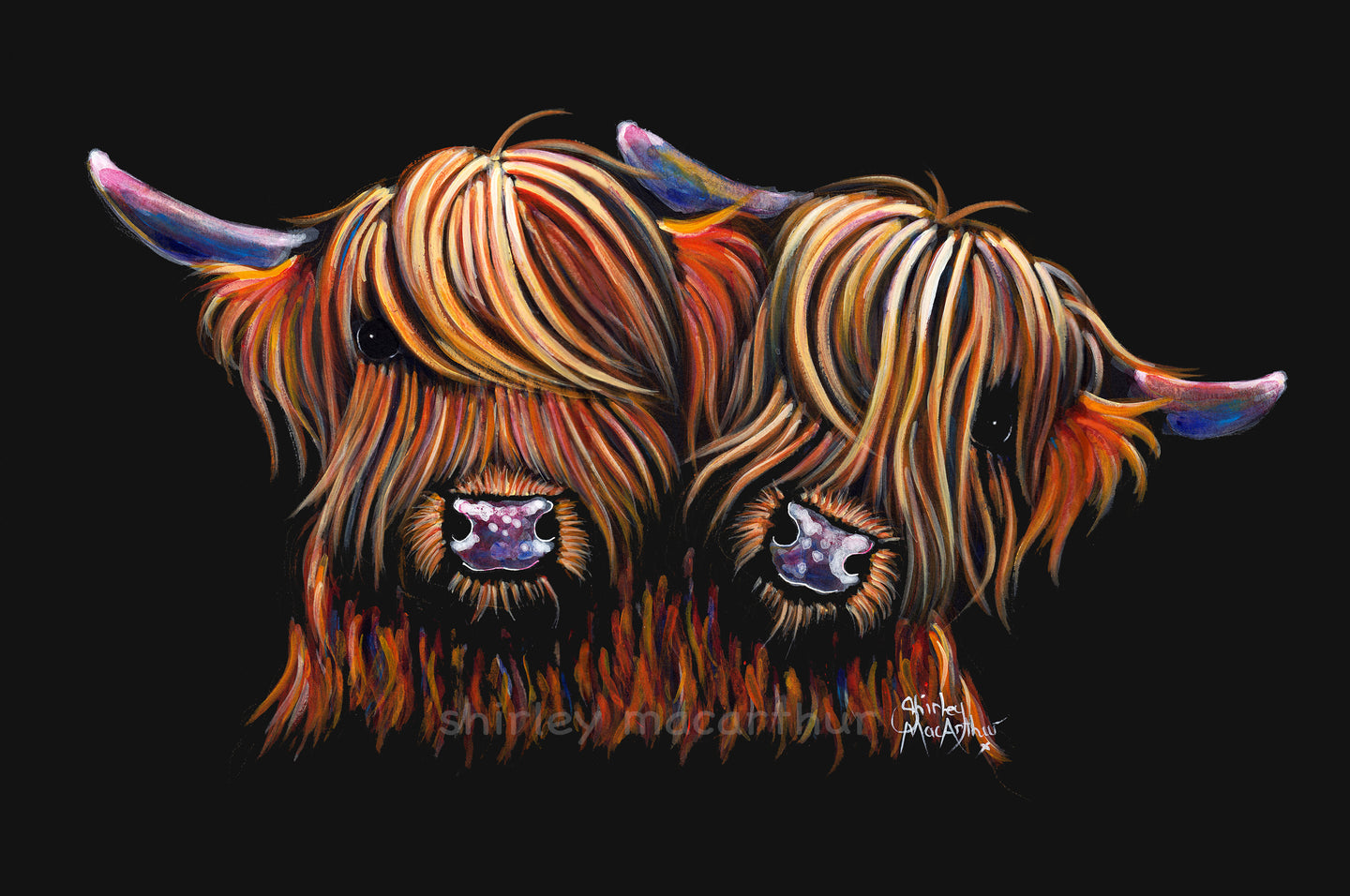 'PaLS'  HiGHLaND CoW PRiNT, WaLL ART - BY SHiRLeY MacARTHuR