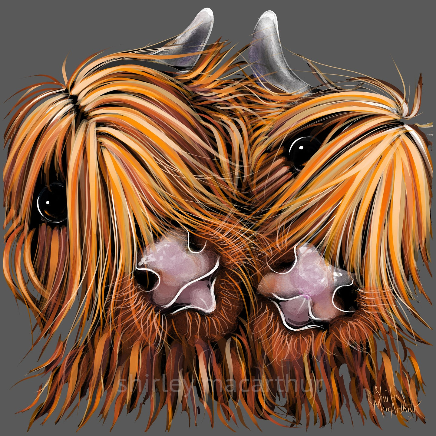 ' RHuBaRB and GiNGeR ' HiGHLaND CoW PRiNT, WaLL ART