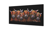 ALL IN A RoW !  HiGHLaND CoW PRiNT, WaLL ART - BY SHiRLeY MacARTHuR