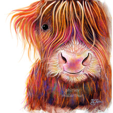 Highland Cow Prints 'The Kid' by Shirley MacArthur