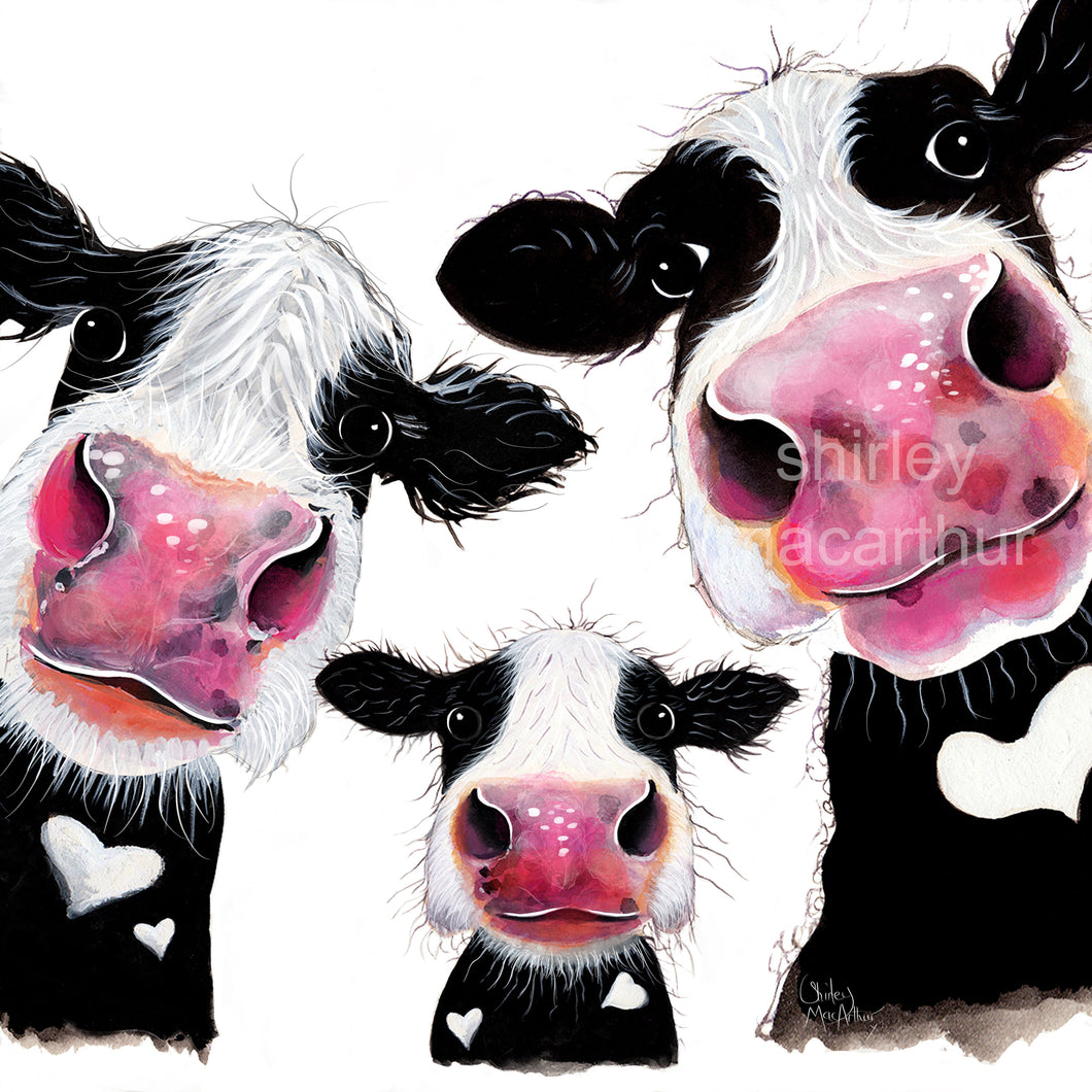 ' THe NoSeY FaMiLY '  CoW PRiNTS by SHiRLeY MaCARTHuR