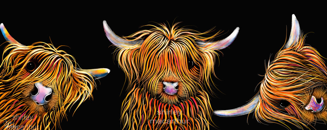 ' THe SCoTTieS '  HiGHLaND CoW PRiNT, WaLL ART - BY SHiRLeY MacARTHuR