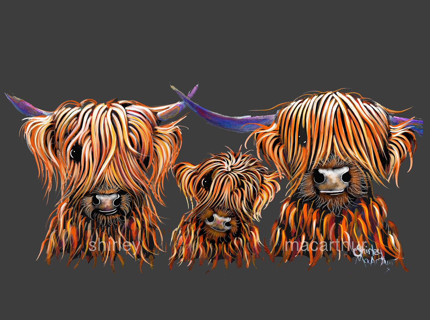 Highland Cow Prints 'The Tangerines' by Shirley MacArthur