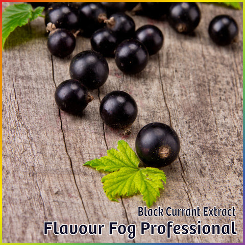 Black Currant Extract - FF Pro - Flavour Fog - Canada's flavour depot.