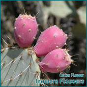 Cactus Flavour- Inawera - Flavour Fog - Canada's flavour depot.