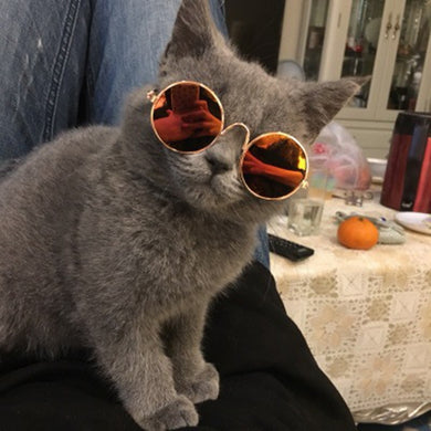 Cool Stylish Pet Sunglasses Dog Cat Eye Protection Funny Cute Round Sunglasses