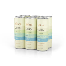 Load image into Gallery viewer, SkinTē Hibiscus Vanilla 6-pack Collagen Sparkling Tea