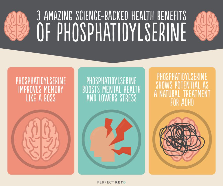 Benefits of phosphatidylserine