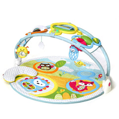 Skip Hop Explore & More Amazing Arch Activity Gym