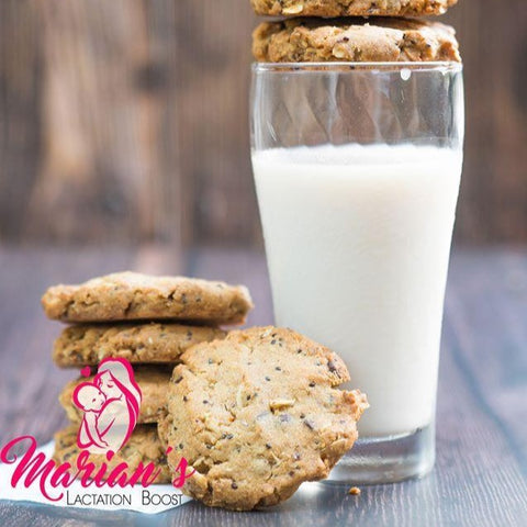 Marian's Lactation Boost Chocolate Chunk Walnut Cookies