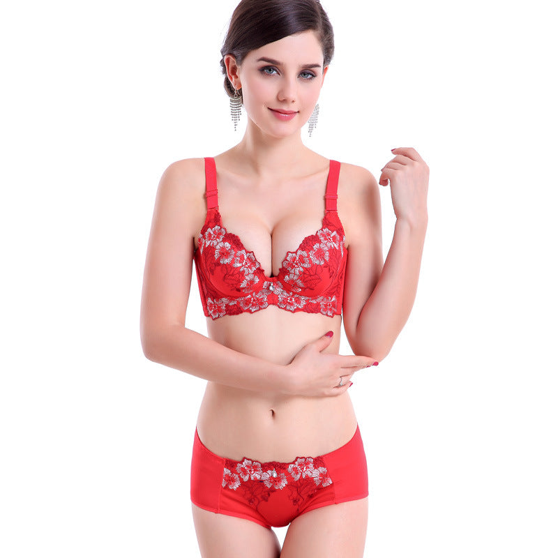 Embroidery Flower Lace Push Up Bra and Pantie Set