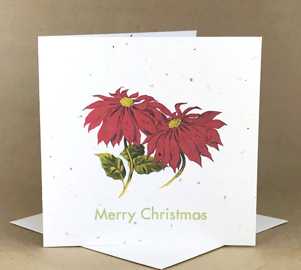 Okku Plantable Card - Merry Christmas