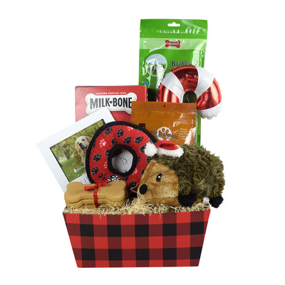 Treats & More Treats Dog Gift Basket