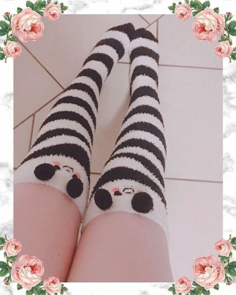 Panda Bear Thigh Highs - socks