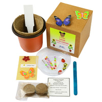 I Can Grow Kit-Sunflowers