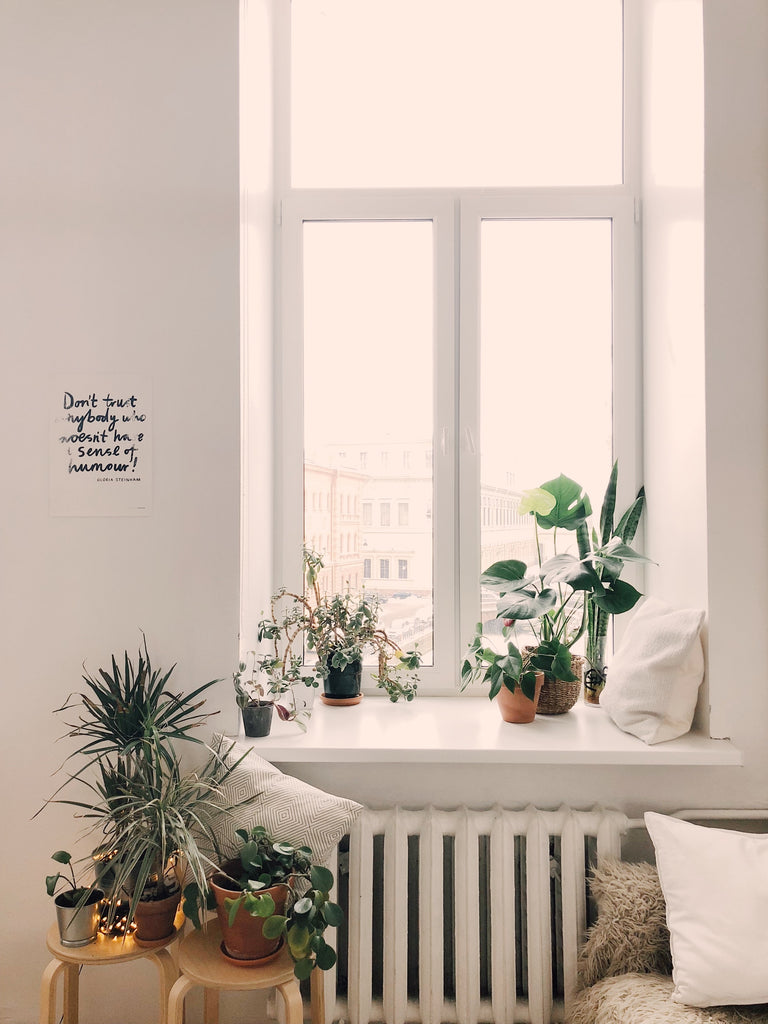 Styling your home with plants - botanical look at home