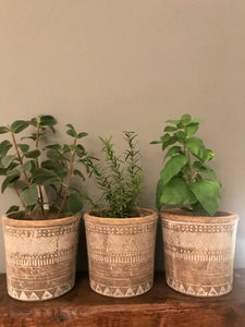 Faux Herb Set