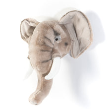 George The Elephant - Animal Head