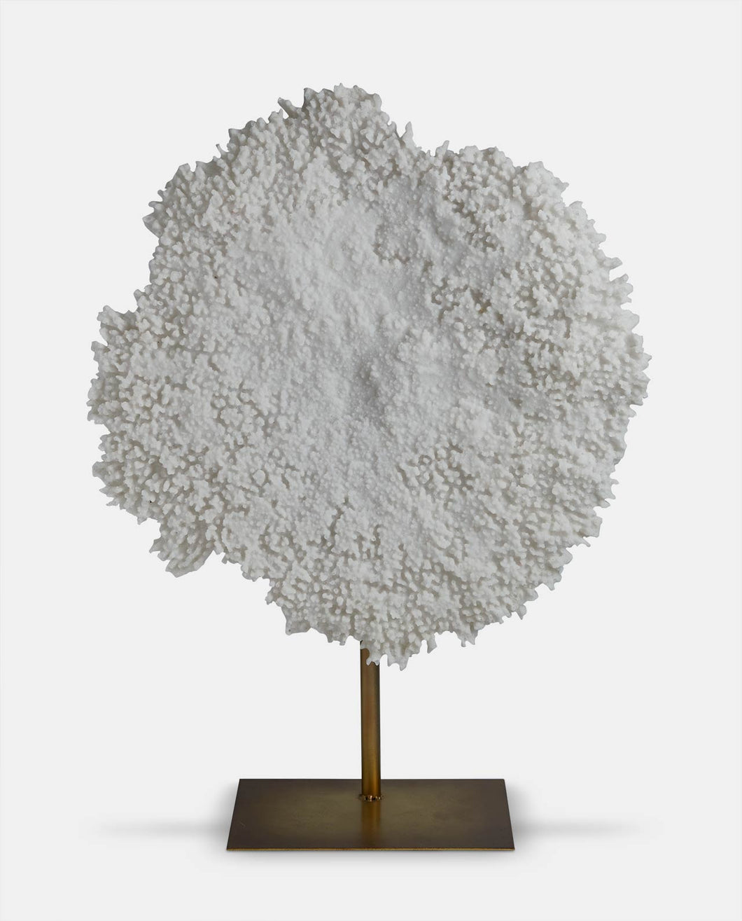 white coral decorative piece