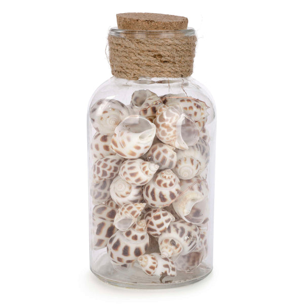 "8.5"" LED Glass Jar With Decorative Shells"