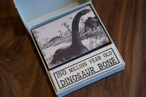 dinosaur bone knife