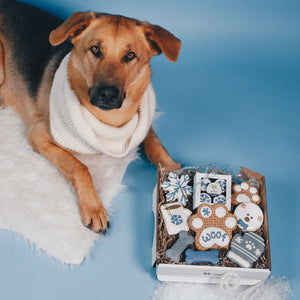 Winter Woof + Holiday Feast Cookie Box Bundle - Wüfers Cookie Boxes for Dogs