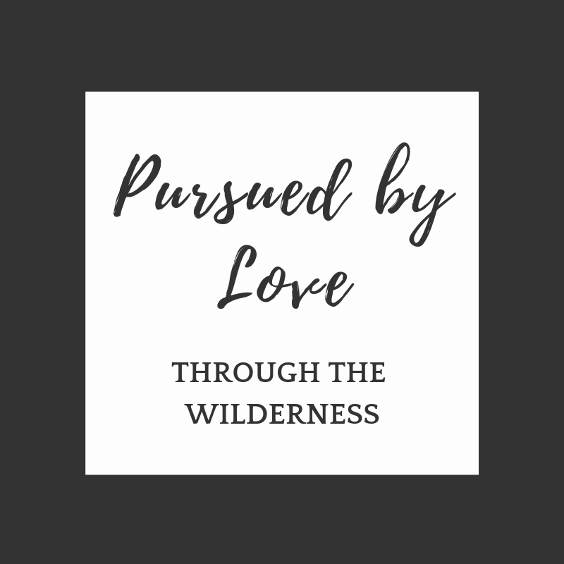 Pursued By Love Through the Wilderness