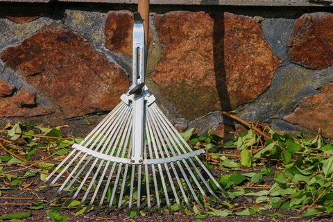 Autumn lawn care - scarifying with a rake