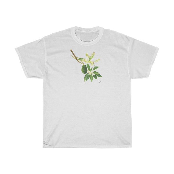 Avocado by Sarah Jane Humphrey [Looser Fit, Unisex]