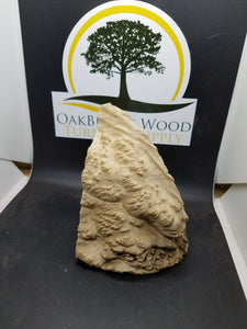 casting Brown Mallee burl - Oakbrook Wood Turning Supply