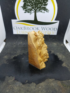 Casting corrugata burl - Oakbrook Wood Turning Supply