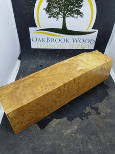 Brown mallee burl - Oakbrook Wood Turning Supply