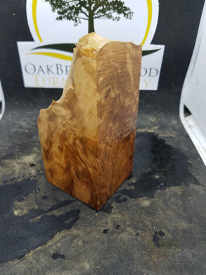 Casting aussie redwood burl - Oakbrook Wood Turning Supply