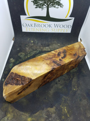 Casting willow burl