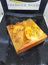 Cast yellow cedar burl