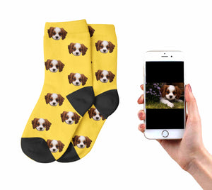 Kids Dog Socks