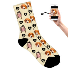 Dog & Owner On Socks
