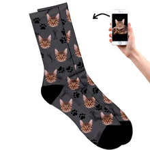 Cat On Socks
